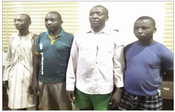 Lagos cattle sellers arrested for funding bandits in Zamfara lailasnews